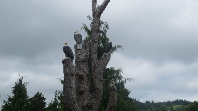Eagles and owls carved into a dead tree