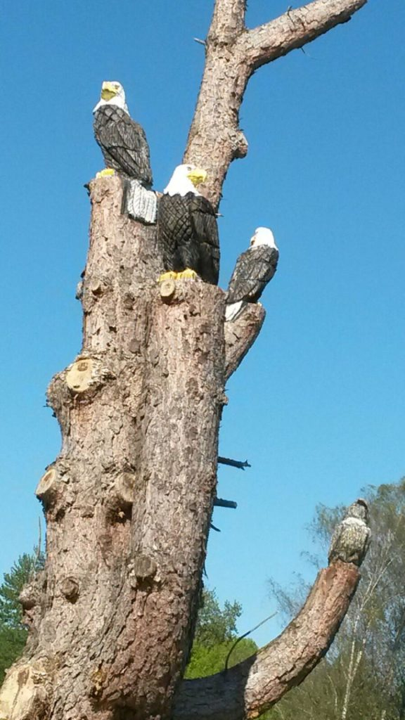 eagles carved into a tree